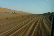 desertnightscamp4