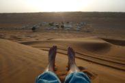 desertnightscamp43