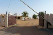 desertnightscamp7