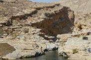 wadibanikhalid10